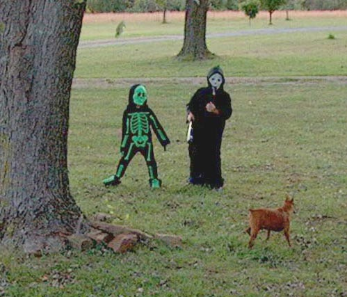 Halloween Spooks (and Rudy the dog)