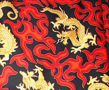 Devon's Dragon Fabric