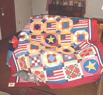Homeland Pride Americana Mystery Quilt